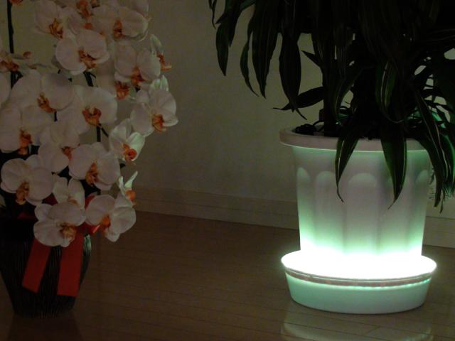 LEDテープライト【サンプル4】